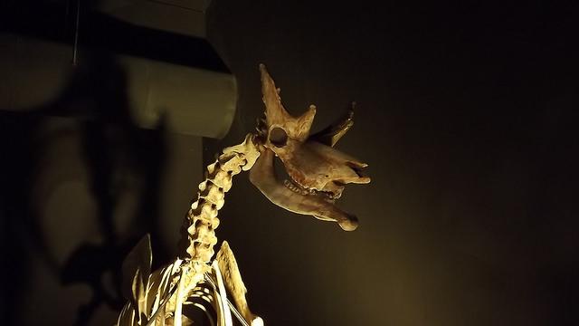 Dinopolis (Teruel)