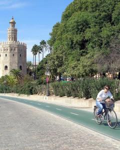 Caril_Bici_Sevilla_Torre_Oro