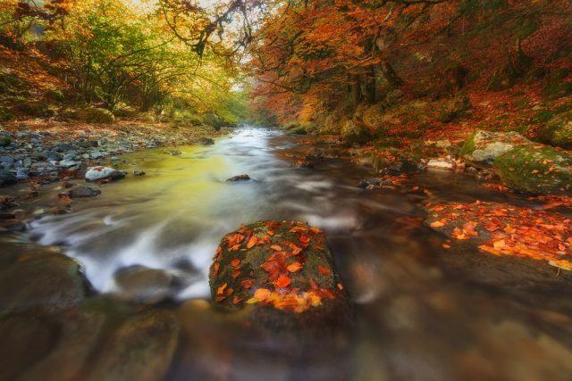 Europa paisajes turismo otoño España Navarra Selva Irati Shutterstock Alfredo Ruiz Huerga