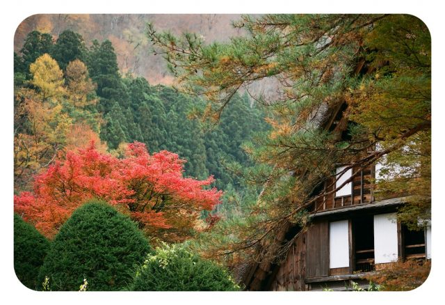 Japón, destino de cine