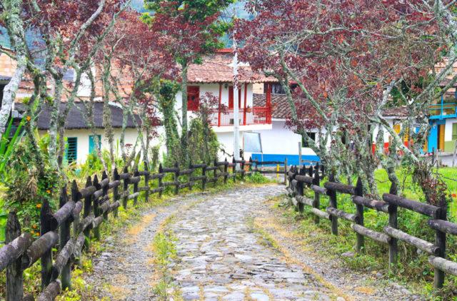 jardin-colombia