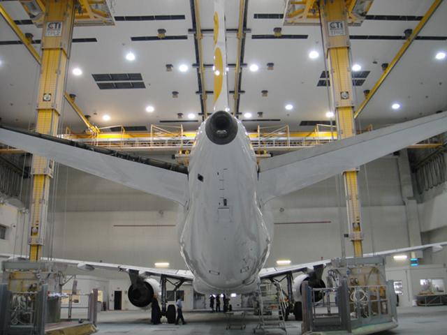 Iberia Airplane paint