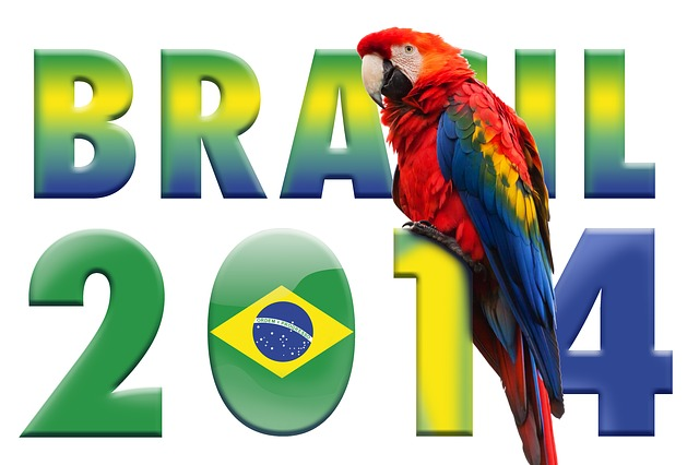 L2F May 14 Brazil World Cup parrot graphic Pixabay