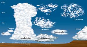 L2F Nov 14 pic cloudspotting Jason dot org
