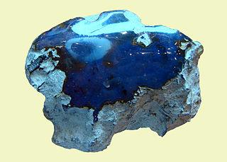 L2F Dec 14 DR blue amber Vassil Wikipedia