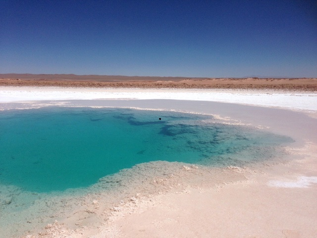 L2F Jan 15 pic Argentina Tolar Grande salt pools Felice Hardy
