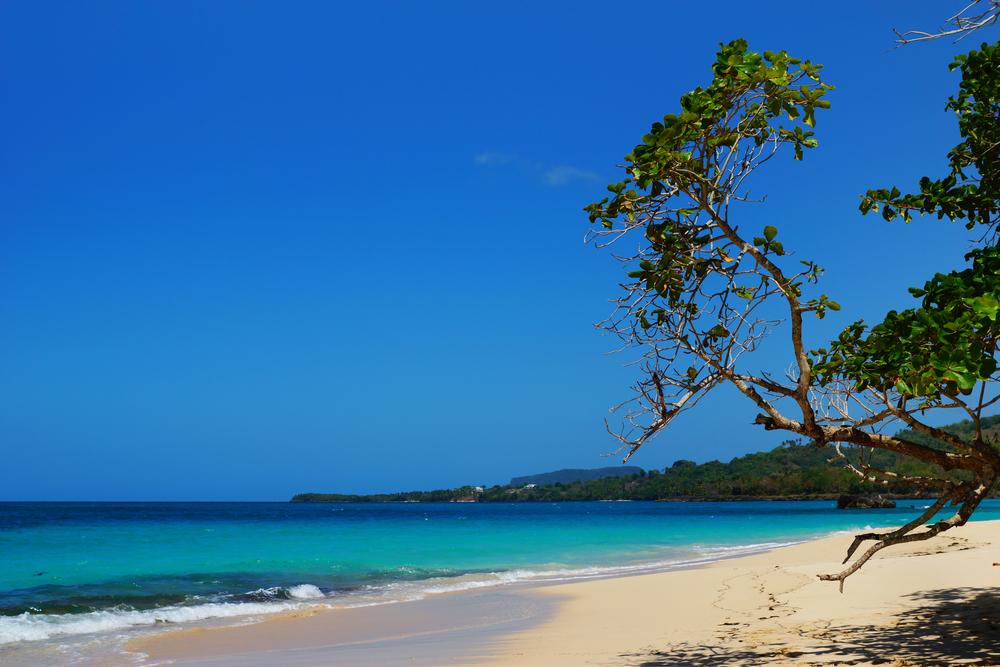 Dominican Republic Samana Playa Rincon Sylvie Corriveau shutterstock_251284783