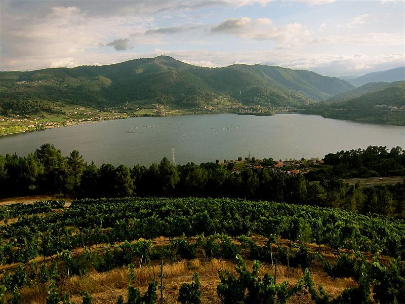 Spain wine regions Galicia Rias Baixas Enrique Dans Wikipedia