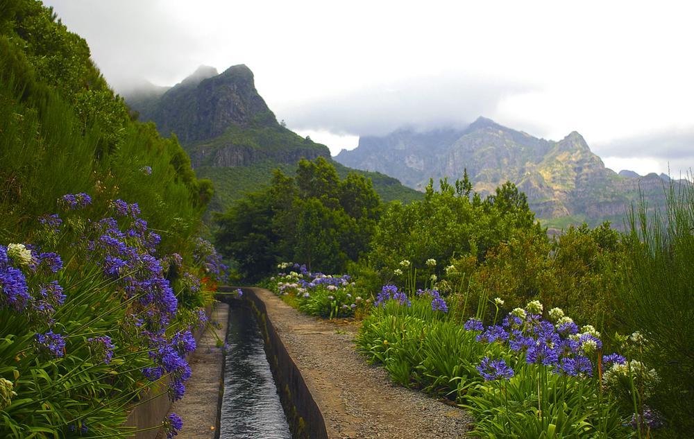 Portugal Madeira levadas A.S.Floro shutterstock_129910145