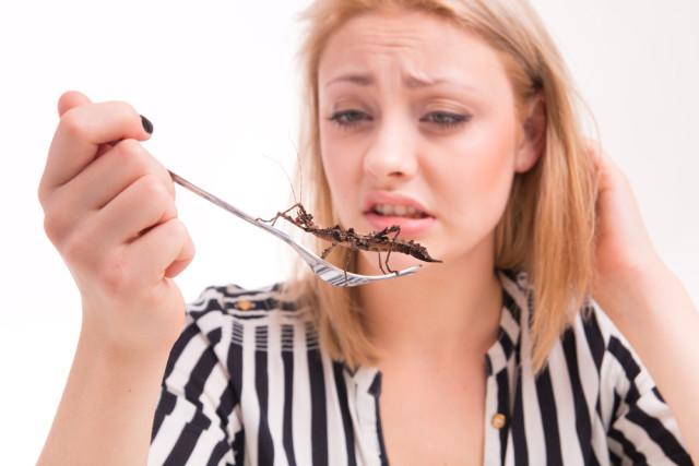 international foods unusual insects bugs Michal Ludwiczak shutterstock_236766454