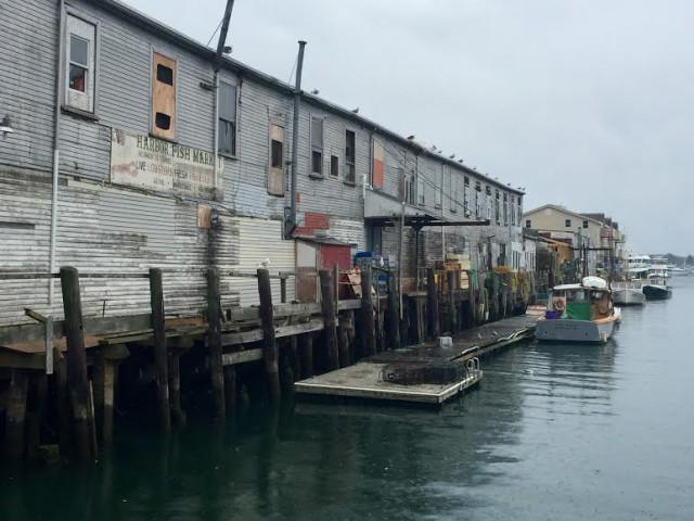 USA Maine New England Portland Harbor Fish Market - David Paul Appell