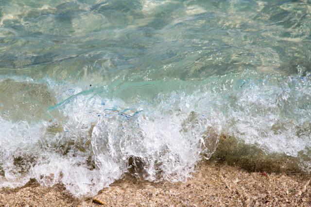 USA beaches waves crashing on shore Anton Pestov shutterstock_179342138