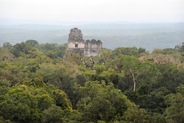 Tikal   Stefano Ember shutterstock_225262825