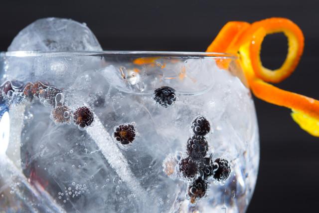 cocktails gin juniper berries holbox shutterstock_138600890