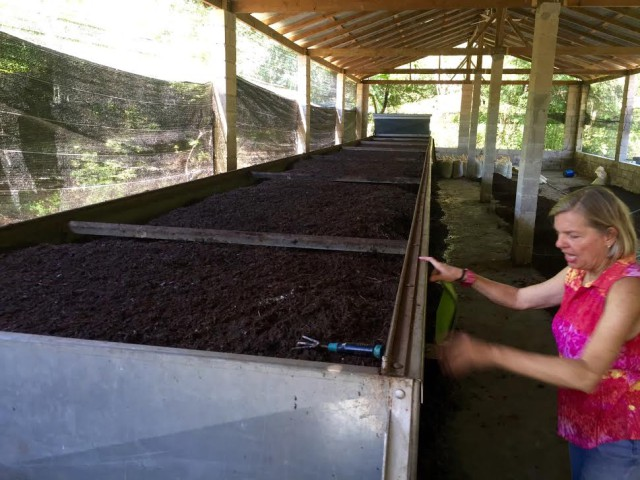 L2F Jan 16 pic Dominican Punta Cana Ecological Foundation worms