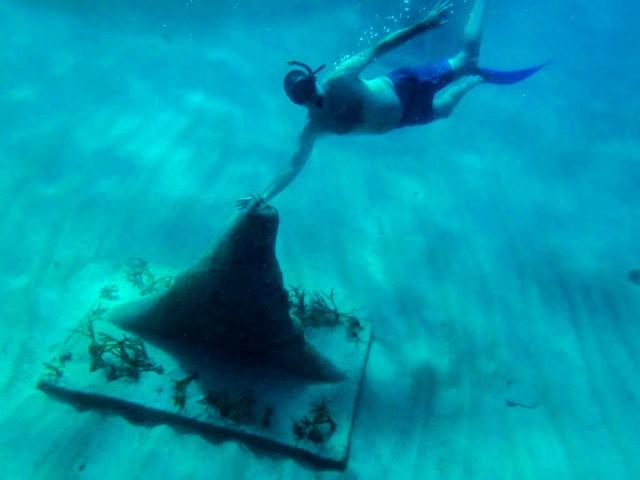 Dominican Republic Punta Cana Westin underwater museum Jeff Sobel