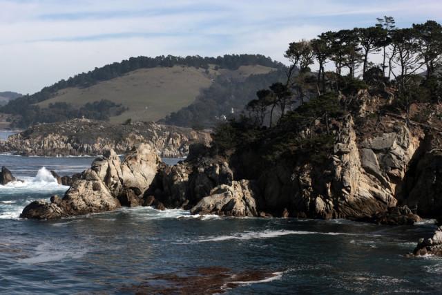 L2F Jan 16 pic USA CA Hitchcock Point Lobos Dan Schreiber shutterstock_120051442