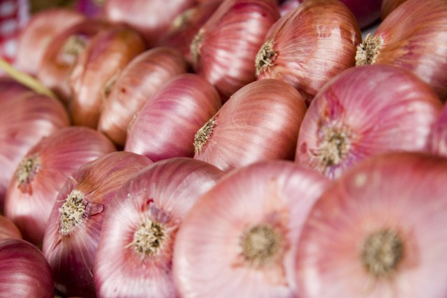 Spain Basque Country Zalla violet purple onions