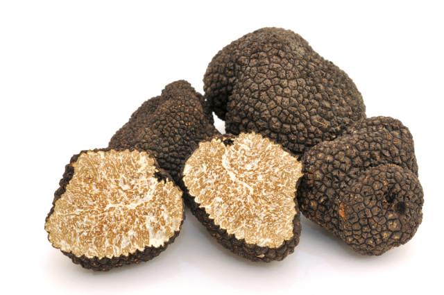 Spain food culinary balck truffles GraCon Design shutterstock_222228148
