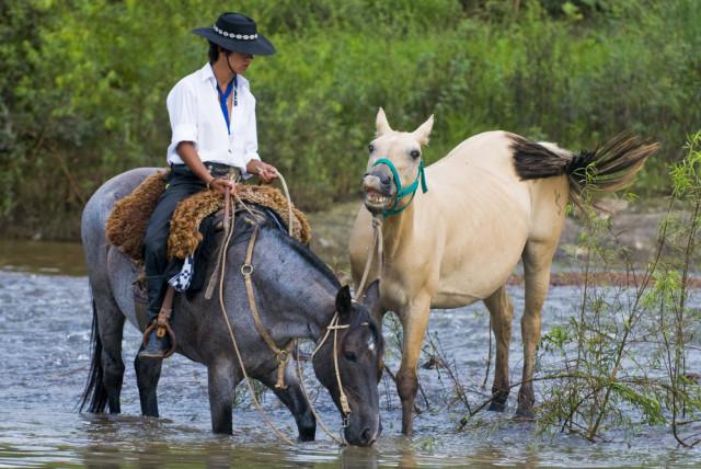 Uruguay ranches gaucho with horses Kobby Dagan shutterstock_28097362