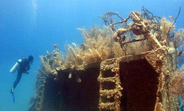 Honduras Roatan Prince Albert wrech diving John A. Anderson shutterstock_36278611