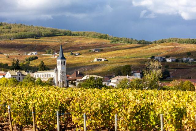 l2f-france-beaujolais-chenas-vineyards-shutterstock_273469094