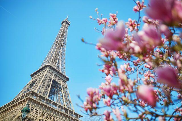 L2F Apr 18 pic Europe Easter Paris Eiffel tower tulip tree shutterstock_389964913