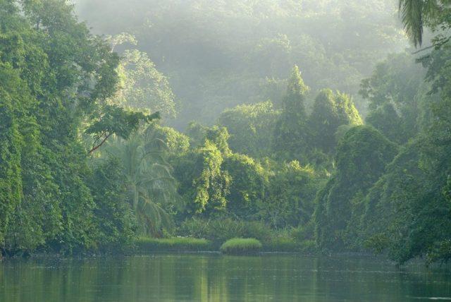 L2F May 18 pic Costa Rica Osa river shutterstock_147110726