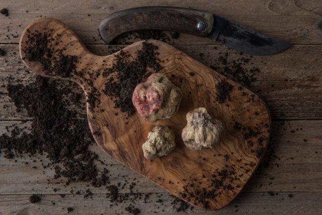 Top view alba white truffle on wood board and truffle'sknife