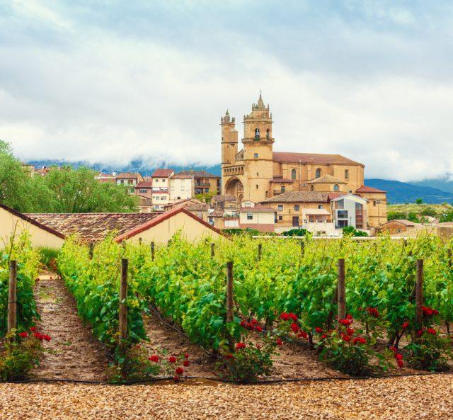 La Rioja Wine Country Vineyards and church