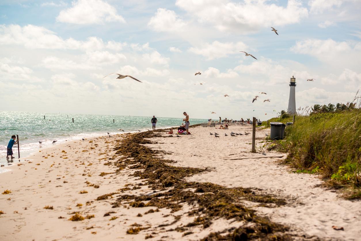 Key Biscayne, USA - January 23, 2015: Cape Florida Lighthouse and people enjoying the beach, USA