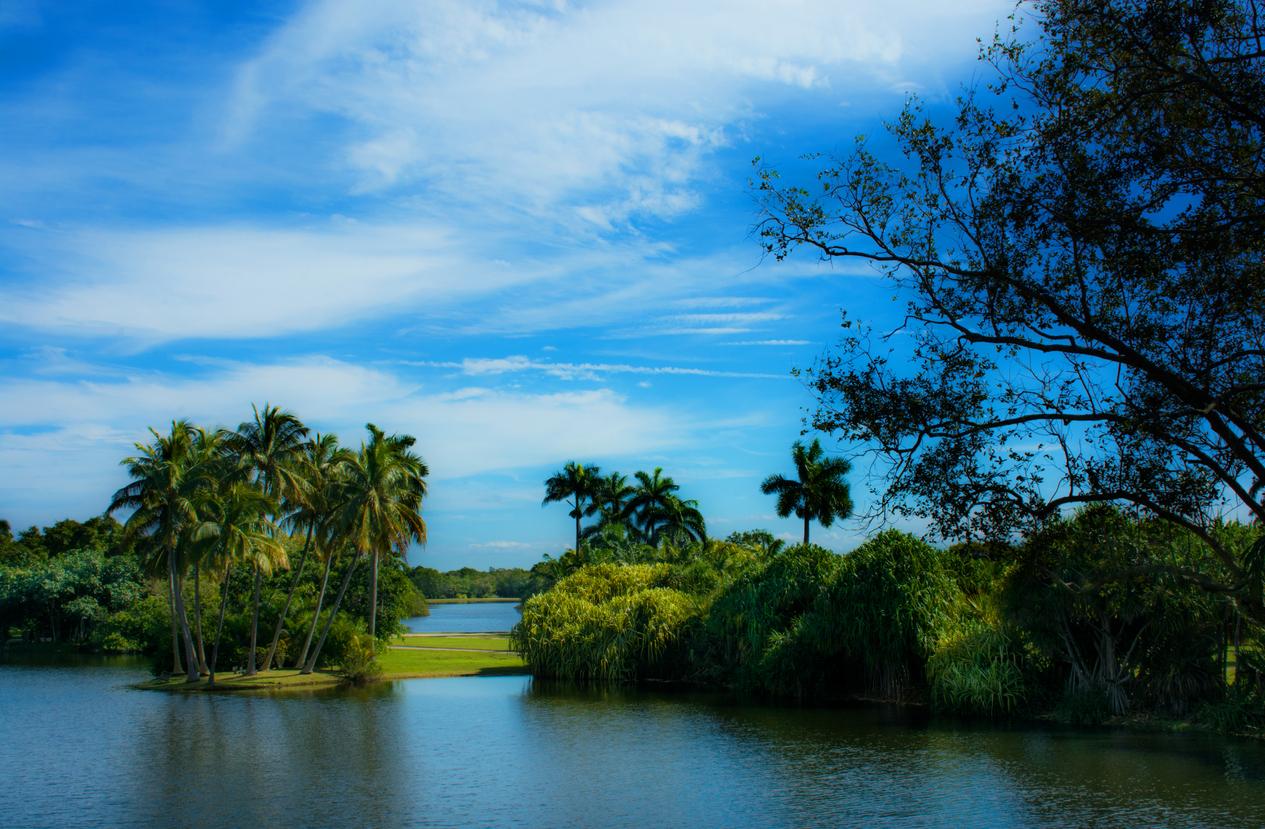 Beautiful Winter Morning at Fairchild Tropical Botanical Garden in Miami, Florida