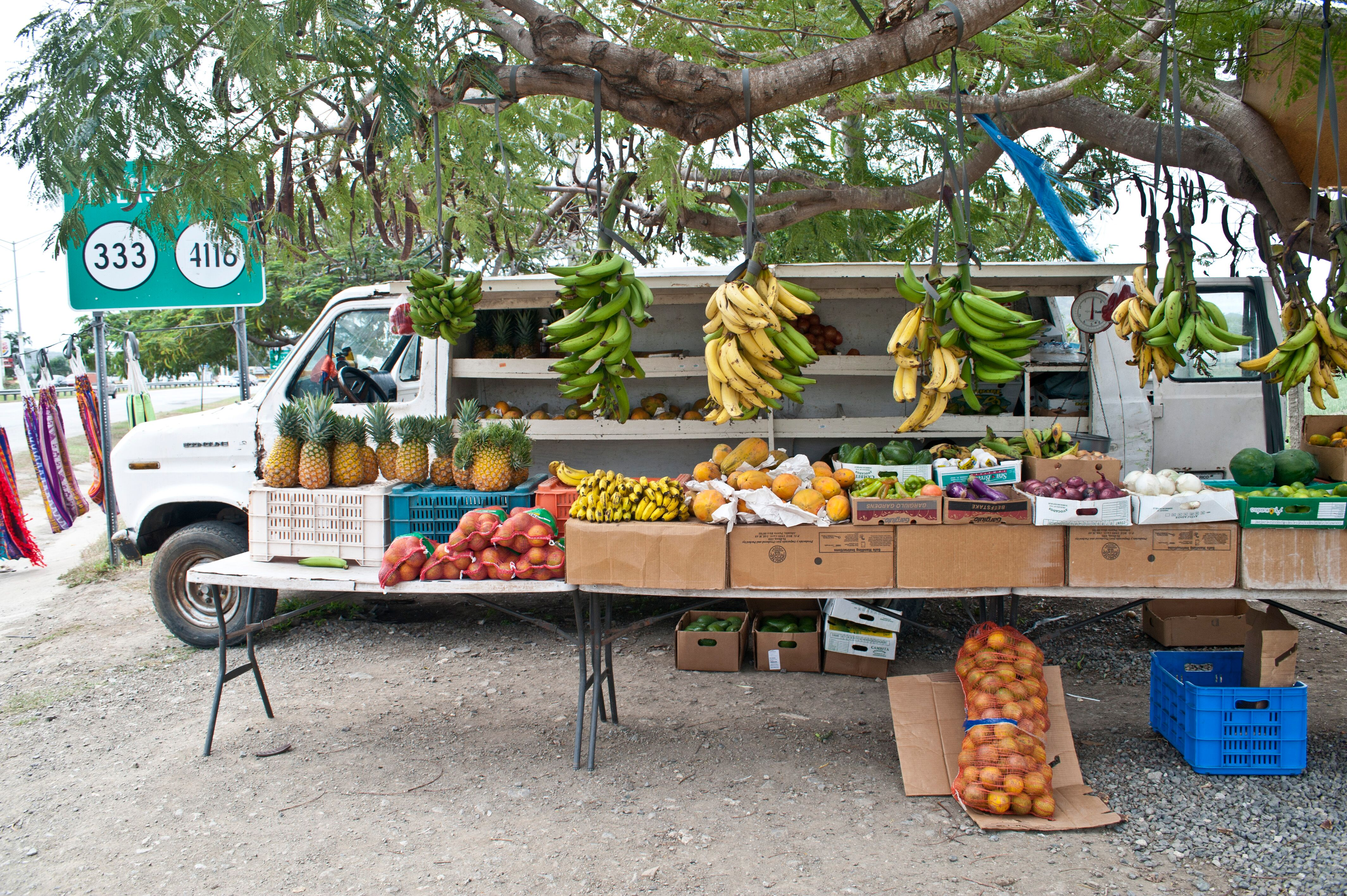 L2F May 19 pic Puerto Rico dining travel book fruit truck