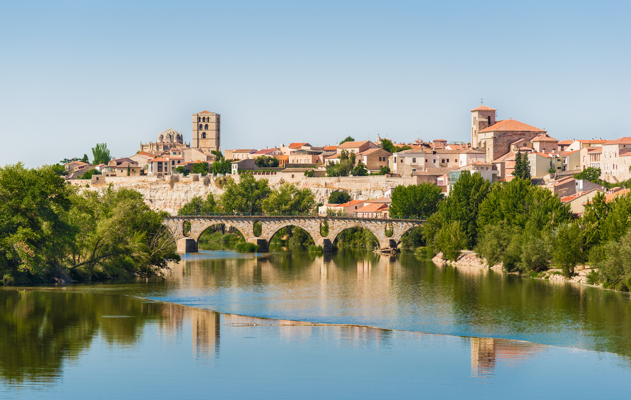 Panorama of Zamora with Romanesque style cathedral and ancient bridge over Duero river.