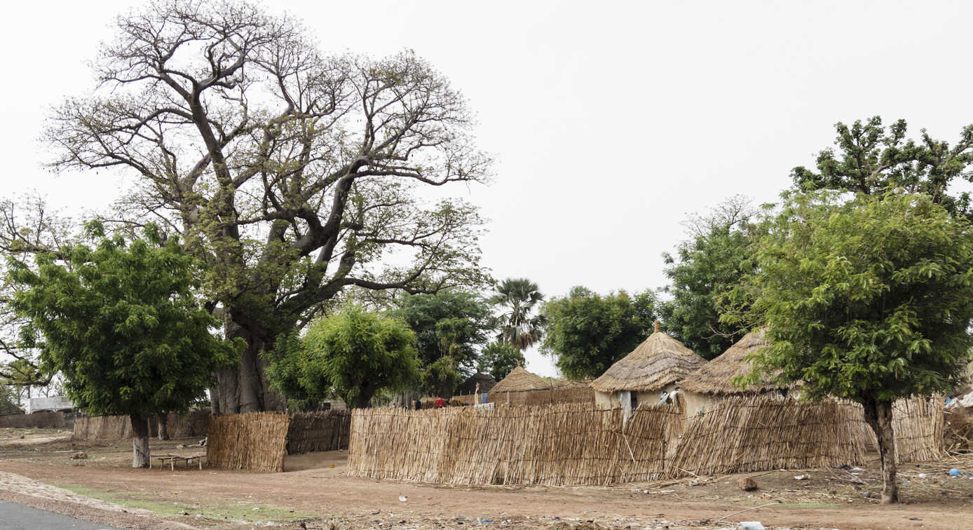 Settlement of cabins with the ceiling straw in Senegal