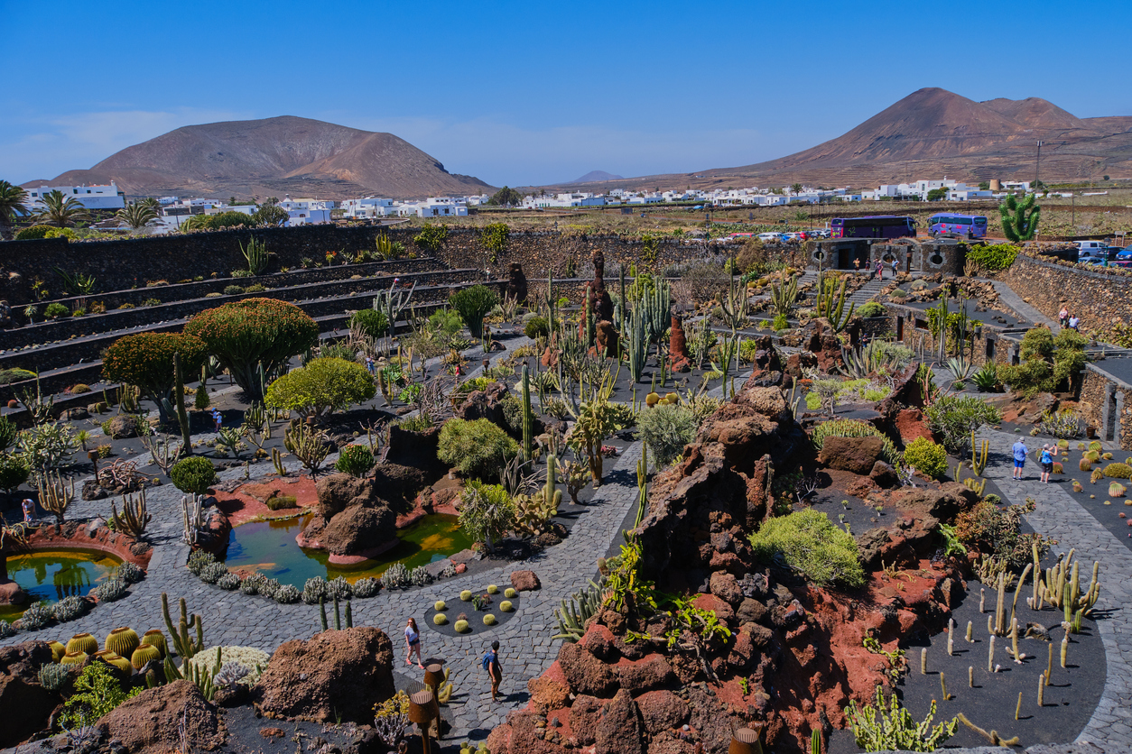 Guatiza, Lanzarote, Spain April 28, 2019: View over arrangement of cactus at Cactus Garden -Jardin de Cactus- situated in the village of Guatiza on the island of Lanzarote in the Canary Islands