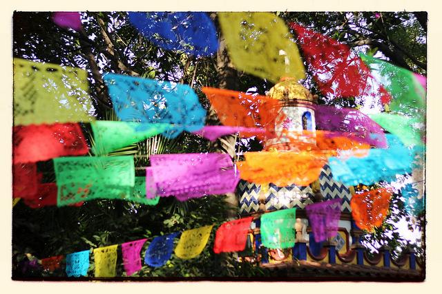 Jardín en Coyoacán