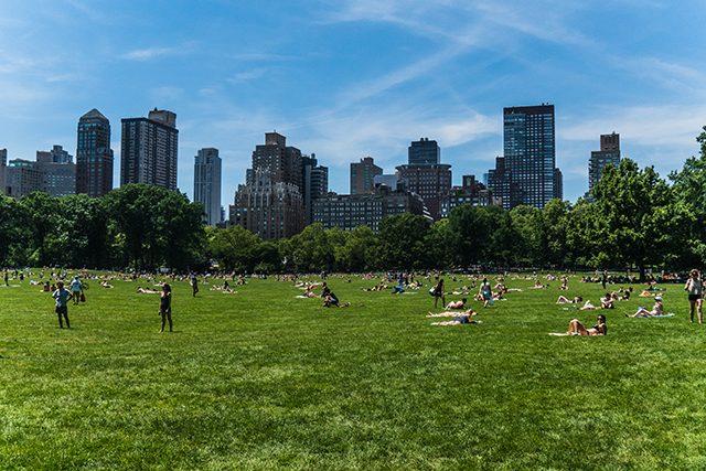 Central Park Nueva York Estados Unidos Algo Que Recordar