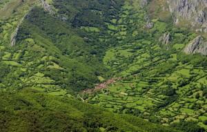 Redes, Asturias
