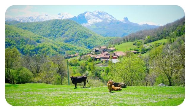 Valles de Cantabria