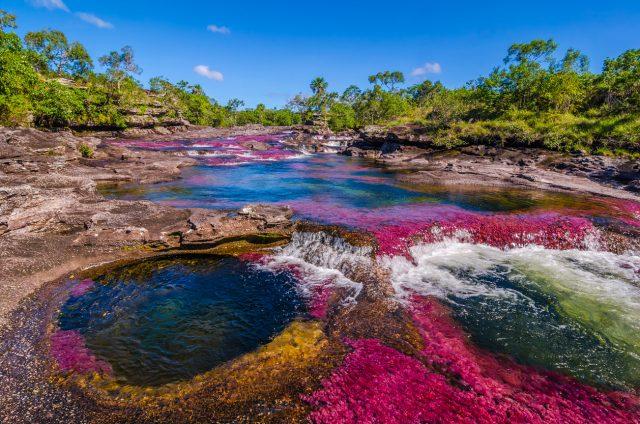 Caño Cristales, Amazonía – Orinoquía Colombiana