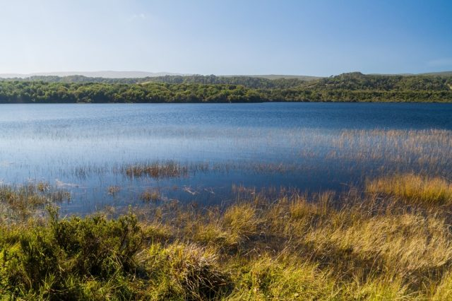 Cucao lake in Chiloe National Park, Chile